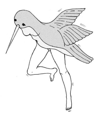 La pájara. Ilustración. Por Valeria Zelaya Lacayo.